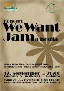 koncert-we-want-jam